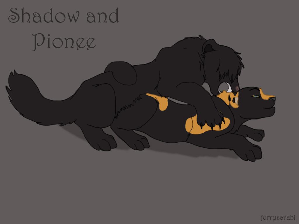 shadow comic of the light furry Boku no pico sin censura episodio 2